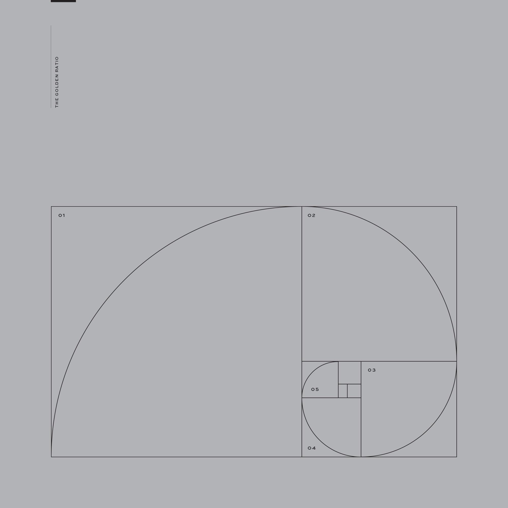 Folio_Square_They_06new